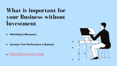 What is important for your business without investment
